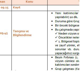 Bölgesel Çalıştaylar için Öneri Program