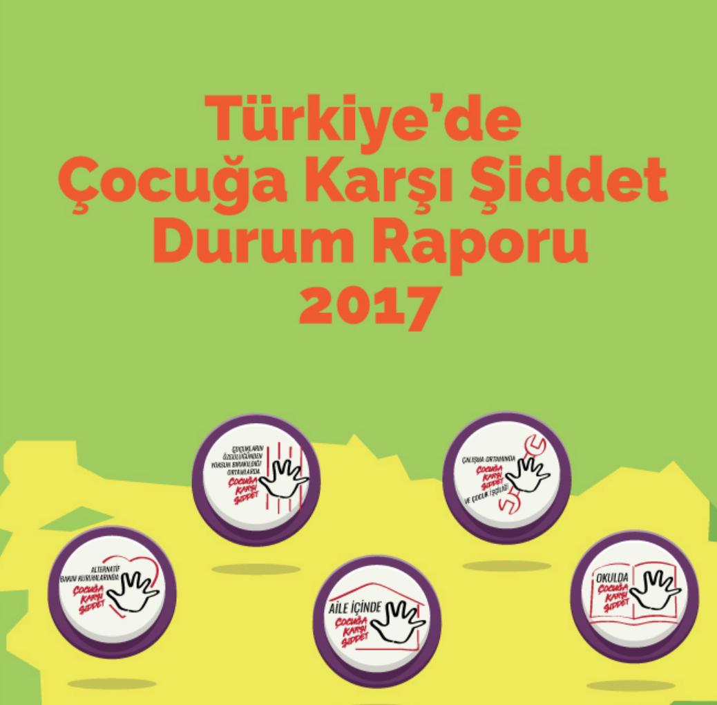 Türkiye'de Çocuğa Karşı Şiddet Durum Raporu, 2017